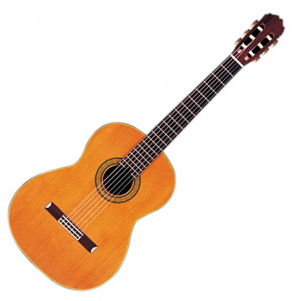 Classical guitar wedding music reception entertainment acoustic guitar